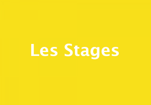 Stage Web
